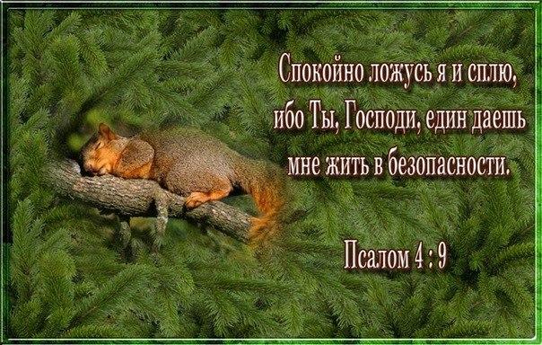Библейские открытки с текстами из библии 73